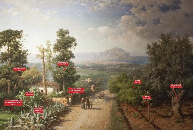 L'Orto Botanico dipinto da Francesco Lo Jacono