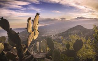 Vigneti, mare e dimore storiche: la Sicilia dell'immobiliare che rinasce