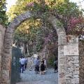 Una grande Festa dell'Albero presso Le Rocce di Capo Mazzarò