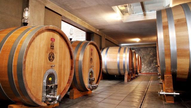 Il vino delle Cantine Tornatore fa novanta... e più!