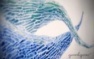 Omeomerie - Sculture e oggetti d'uso in materiale ceramico