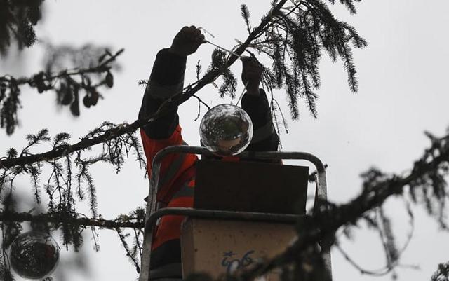 Che fine fanno gli alberi di Natale veri dopo le feste?