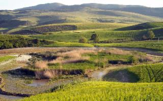 Il Parco dei Monti Sicani. Conoscere per tutelare