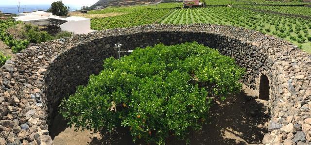 Giardino Pantesco Donnafugata - veduta da drone