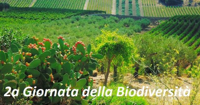 Pandittaino alla seconda giornata Giornata della Biodiversità Siciliana