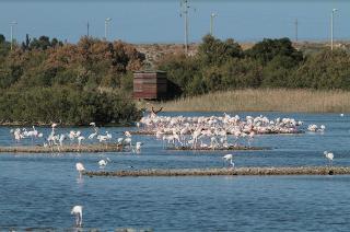 Le riserve naturali siciliane pronte a riaprire per i turisti di prossimità