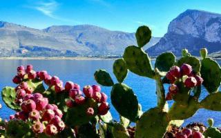 La Sicilia è il posto in Italia dove si mangia meglio (really?)