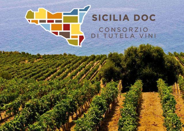 In aumento i vini imbottigliati col marchio del Consorzio Doc Sicilia