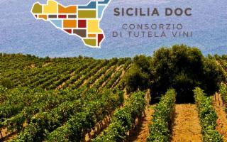 Al vino Doc Sicilia il contrassegno di Stato