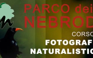 La fotografia al servizio della natura