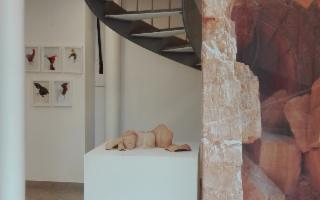 I nuovi luoghi Bias 2018, la Biennale di Arte Sacra, a Selinunte e Gibellina