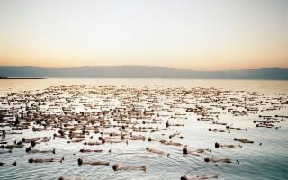 Nudes, i 'Paesaggi Umani' di Spencer Tunick