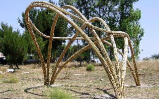 Terra: io sono, un installazione nel cuore dell'Orto botanico di Palermo
