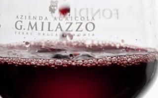 Il miglior vino bio del mondo di quest'anno viene da Campobello di Licata