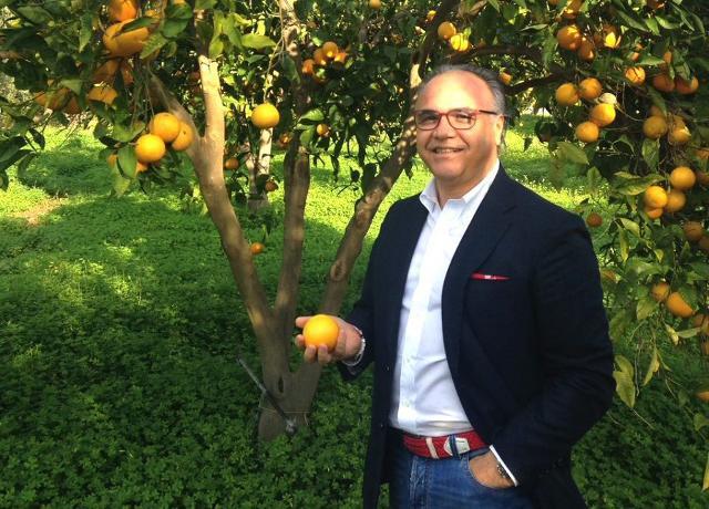 Più legalità per le arance di Sicilia