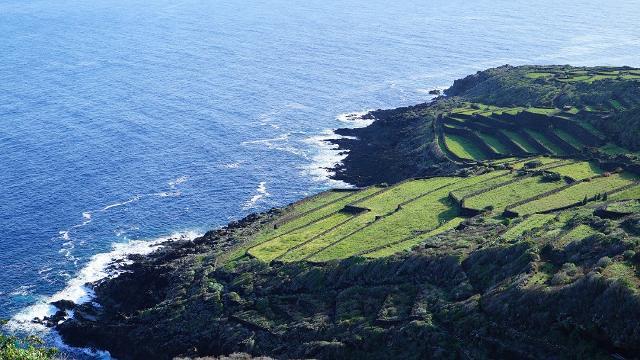 Le terrazze di Pantelleria