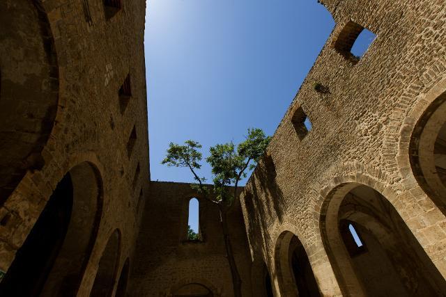 Lo Spasimo di Palermo - © Manifesta, photo Cave Studio