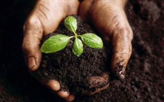21 aziende agricole siciliane a ''La Repubblica dei Contadini''