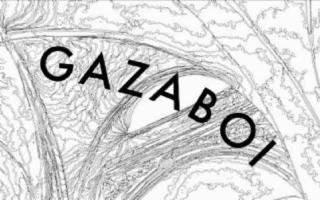 Collettivo Gazaboi