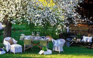 Godersi il proprio giardino d'estate, asciutto e senza zanzare...