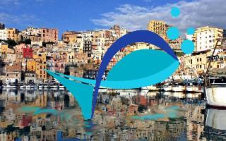 Ad Azzurro Food una  Spremuta di Sicilia!
