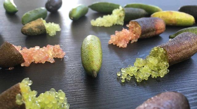 Alcune diverse colorazioni di Finger lime
