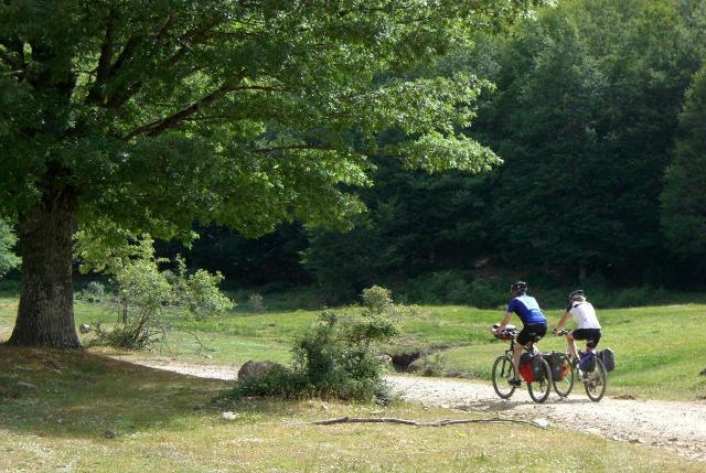 Sui Nebrodi in mountain bike...