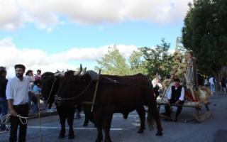 La 54^ Sagra della Spiga e Festa dei Burgisi