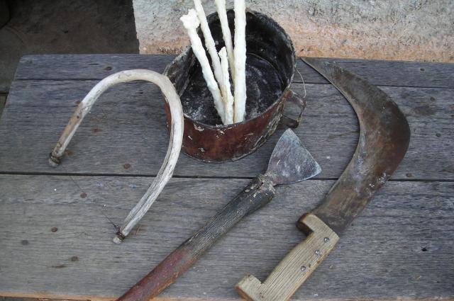 Gli antichi attrezzi per l'incisione dei frassini e per la raccolta della manna