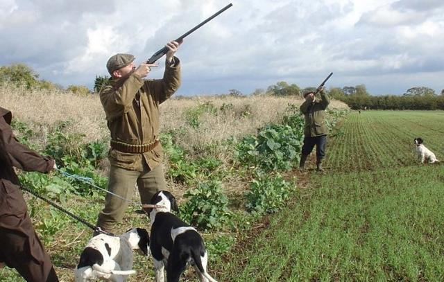 """Secondo i dati del WWF, i cacciatori siciliani sono continuamente in calo ma sempre """"politicamente influenti""""."""