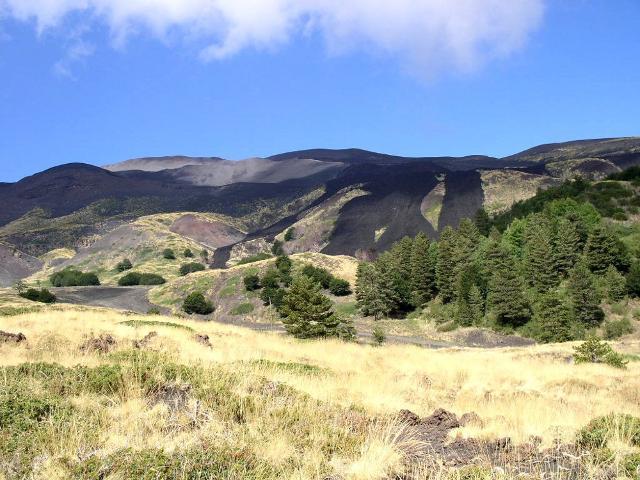 La vegetazione alle pendici dell'Etna