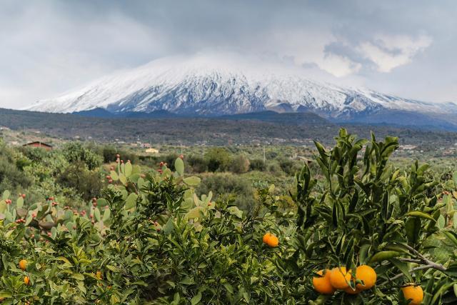 L'Etna visto dalla campagna di Adrano