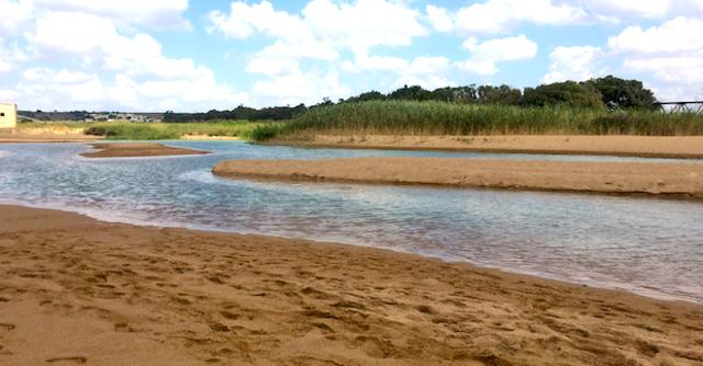 Il fiume Belìce vicino la sua foce