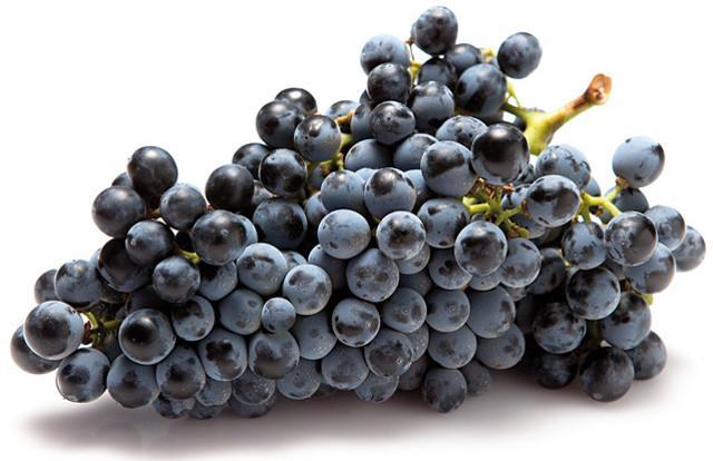 Il Frappato è un vitigno a bacca nera presente in tutta la Sicilia ma essenzialmente nella provincia di Siracusa e in quella di Ragusa