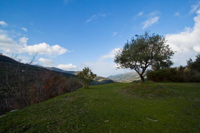 In cima, sui Nebrodi - Foto di Maria Izzo