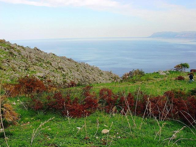 Sentiero di mezza costa - Riserva dello Zingaro