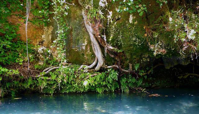Sponda del fiume Calcinara, Pantalica - ph. Pietro Columba