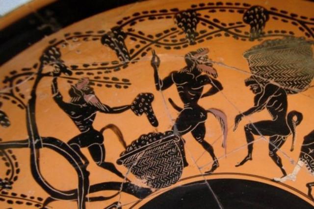 In Grecia le viti erano lasciate libere di scorrere sul suolo...