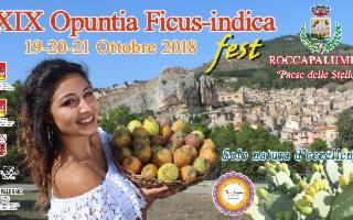 Opuntia Ficus Indica Fest