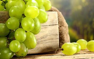 Eccellenze agricole e gastronomiche siciliane all'Uva Fest