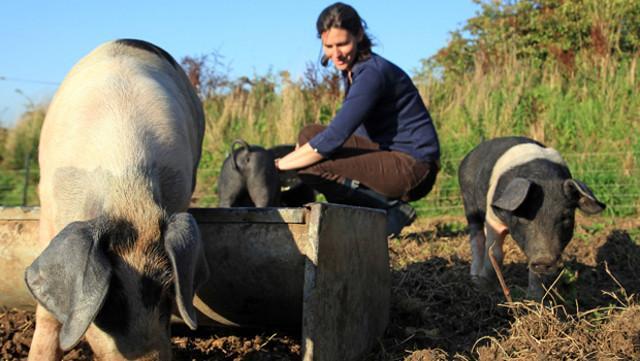 Tra gli elementi di novità, rilevati da Coldiretti, è l'arrivo sui campi di imprenditrici che hanno seguito percorsi formativi diversi dall'agricoltura...
