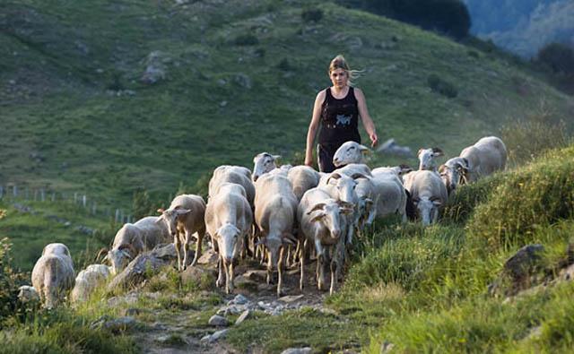 Le donne che abbracciano l'agricoltura intendono davvero gettare le basi per costruire un futuro agricolo migliore...