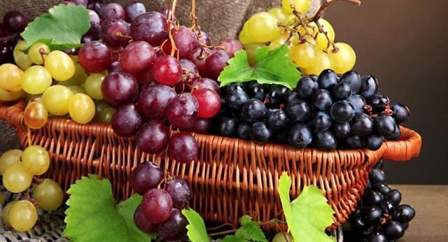 Il contenuto salino e vitaminico dell'uva favorisce l'attività cardiaca e la secrezione dell'apparato digestivo, del pancreas e del fegato...