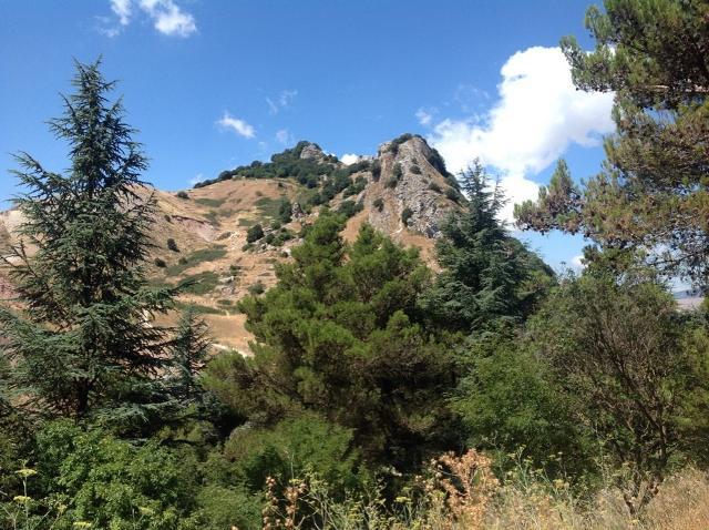 Pizzo della rondine, Monte Cammarata - Foto di markind | wikiloc
