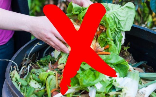 #Sprecozero, un decalogo per evitare di buttare cibo nella spazzatura