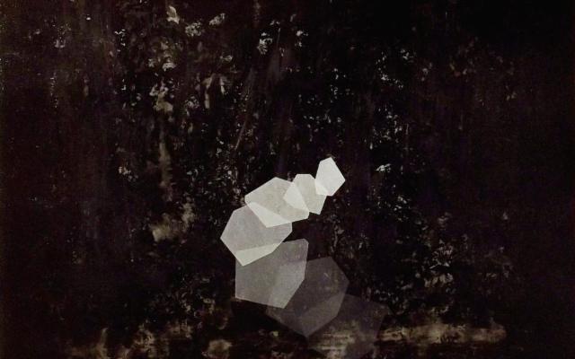 Interazioni possibili, di Thomas Scalco