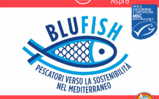 La Flott SpA ospita il primo workshop di Marine Stewardship Council (MSC)