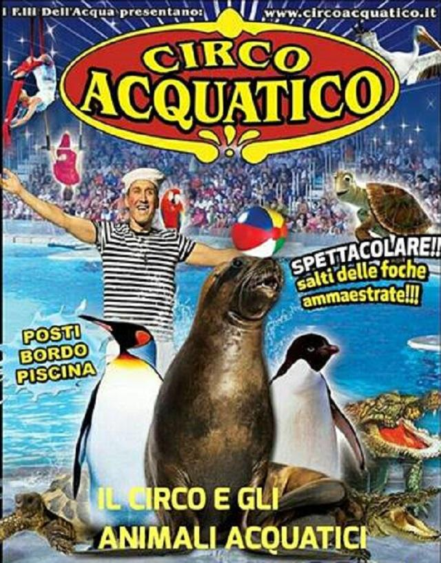 Circo Acquatico