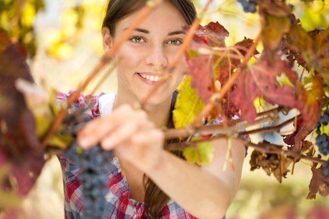 """In Italia, 3 aziende agricole """"giovani"""" ogni 10 sono condotte da donne..."""