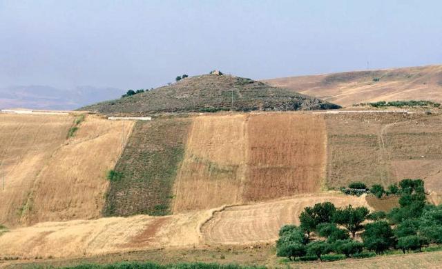 Monte Castellaccio - Campofiorito